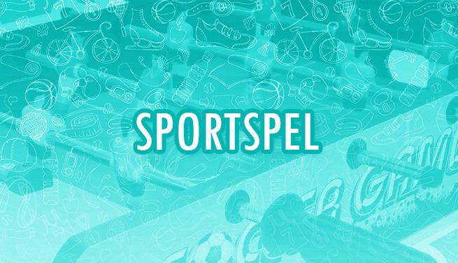 Produktkategori Sportspel